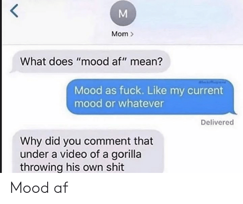 "gorilla: Mom  What does ""mood af"" mean?  Mood as fuck. Like my current  mood or whatever  Delivered  Why did you comment that  under a video of a gorilla  throwing his own shit Mood af"