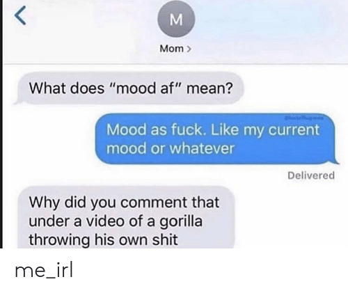 "gorilla: Mom  What does ""mood af"" mean?  Mood as fuck. Like my current  mood or whatever  Delivered  Why did you comment that  under a video of a gorilla  throwing his own shit  M me_irl"