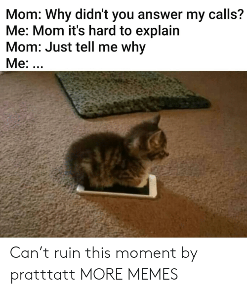 Ruin: Mom: Why didn't you answer my calls?  Me: Mom it's hard to explain  Mom: Just tell me why  Me: ... Can't ruin this moment by pratttatt MORE MEMES