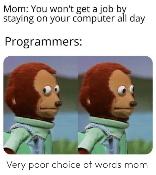 Computer, Mom, and Job: Mom: You won't get a job by  staying on your computer all day  Programmers: Very poor choice of words mom