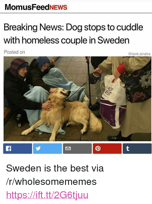 "Cuddle With: MomusFeedNEws  Breaking News: Dog stops to cuddle  with homeless couple in Sweden  Posted on  @tank.sinatra <p>Sweden is the best via /r/wholesomememes <a href=""https://ift.tt/2G6tjuu"">https://ift.tt/2G6tjuu</a></p>"