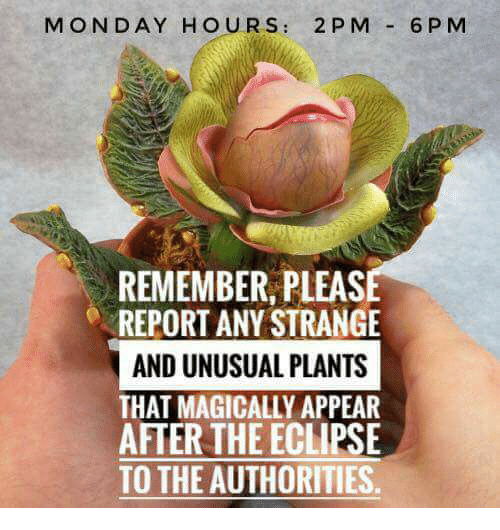 Reportate: MONDAY HOURS: 2 P M 6PM  REMEMBER, PLEAS  REPORT ANY STRANGE  AND UNUSUAL PLANTS  THAT MAGICALLY APPEAR  AFTER THE ECLIPSE  TO THE AUTHORITIES