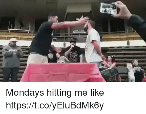 coed: Mondays hitting me like https://t.co/yEluBdMk6y