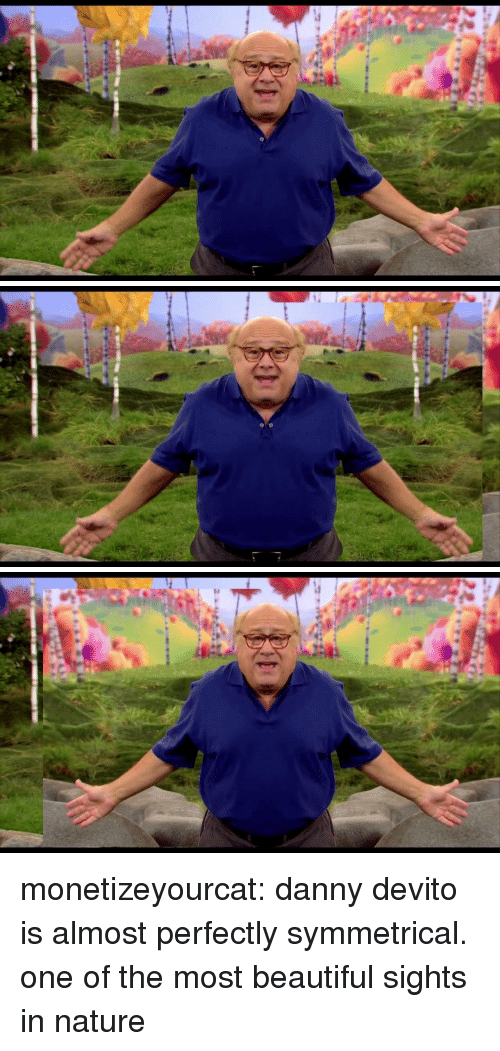 Symmetrical: monetizeyourcat:  danny devito is almost perfectly symmetrical. one of the most beautiful sights in nature