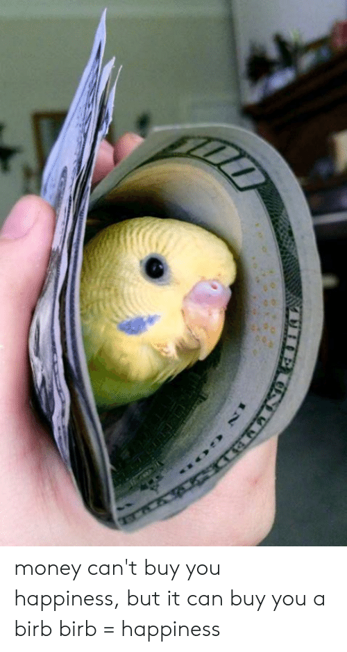birb: money can't buy you happiness, but it can buy you a birb birb = happiness