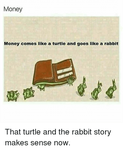 Turtling: Money  Money comes like a turtle and goes like a rabbit That turtle and the rabbit story makes sense now.
