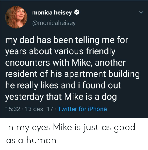 monica: monica heisey  @monicaheisey  my dad has been telling me for  years about various friendly  encounters with Mike, another  resident of his apartment building  he really likes and i found out  yesterday that Mike is a dog  15:32 13 des. 17 Twitter for iPhone In my eyes Mike is just as good as a human