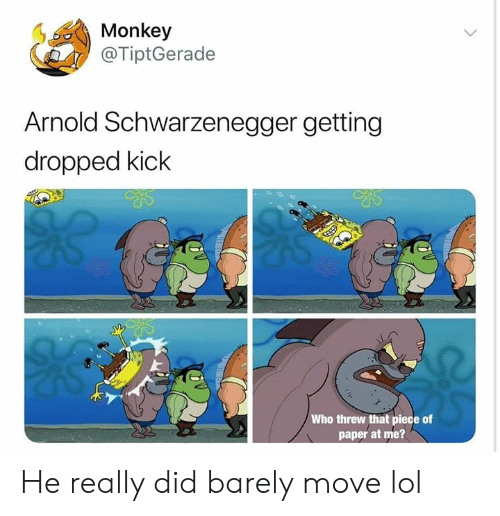Arnold Schwarzenegger, Lol, and Monkey: Monkey  @TiptGerade  Arnold Schwarzenegger getting  dropped kick  Who threw that piece of  paper at me? He really did barely move lol