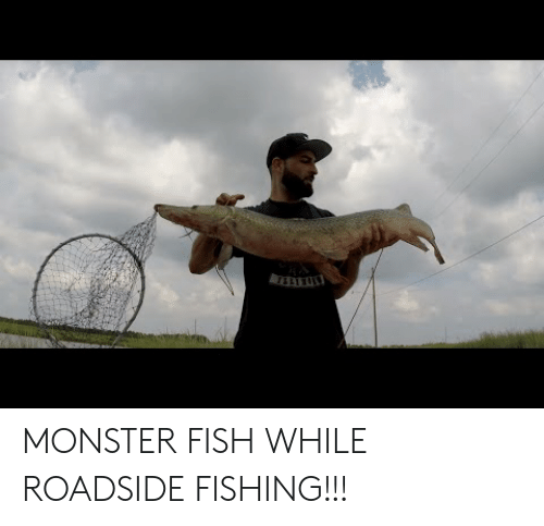 Fishing: MONSTER FISH WHILE ROADSIDE FISHING!!!
