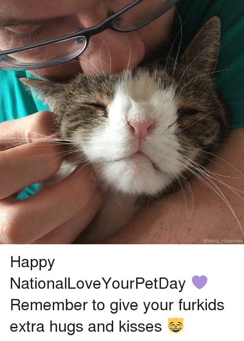 hugs and kisses: @Monty Happiness Happy NationalLoveYourPetDay 💜 Remember to give your furkids extra hugs and kisses 😸