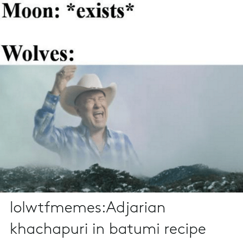 Tumblr, Blog, and Moon: Moon: *exists*  Wolves: lolwtfmemes:Adjarian khachapuri in batumi recipe