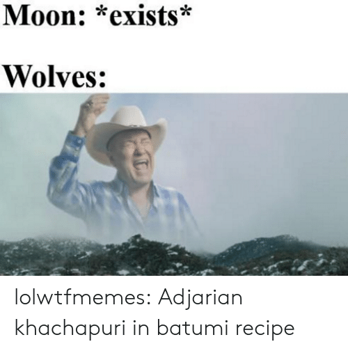Tumblr, Blog, and Moon: Moon: *exists*  Wolves: lolwtfmemes: Adjarian khachapuri in batumi recipe