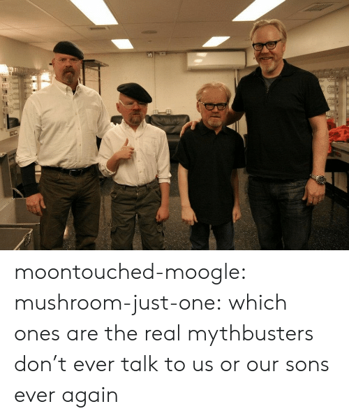 MythBusters: moontouched-moogle:  mushroom-just-one:  which ones are the real mythbusters   don't ever talk to us or our sons ever again