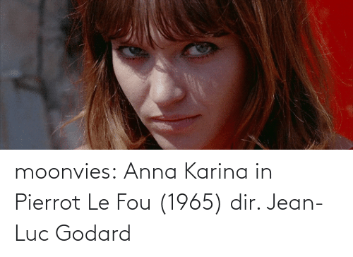 Anna, Tumblr, and Blog: moonvies:   Anna Karina in Pierrot Le Fou (1965) dir. Jean-Luc Godard