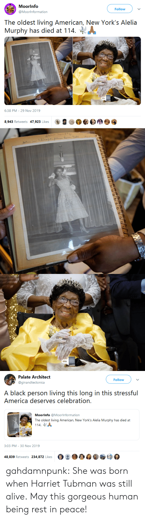 Was Born: Moorinfo  Follow  @Moorinformation  The oldest living American, New York's Alelia  Murphy has died at 114  6:38 PM - 29 Nov 2019  8,943 Retweets 47,923 Likes   EZVOL   Palate Architect  Follow  @ginandtectonica  A black person living this long in this stressful  America deserves celebration.  Moorinfo @Moorlnformation  The oldest living American, New York's Alelia Murphy has died at  114  3:03 PM - 30 Nov 2019  48,839 Retweets 234,872 Likes gahdamnpunk: She was born when Harriet Tubman was still alive. May this gorgeous human being rest in peace!