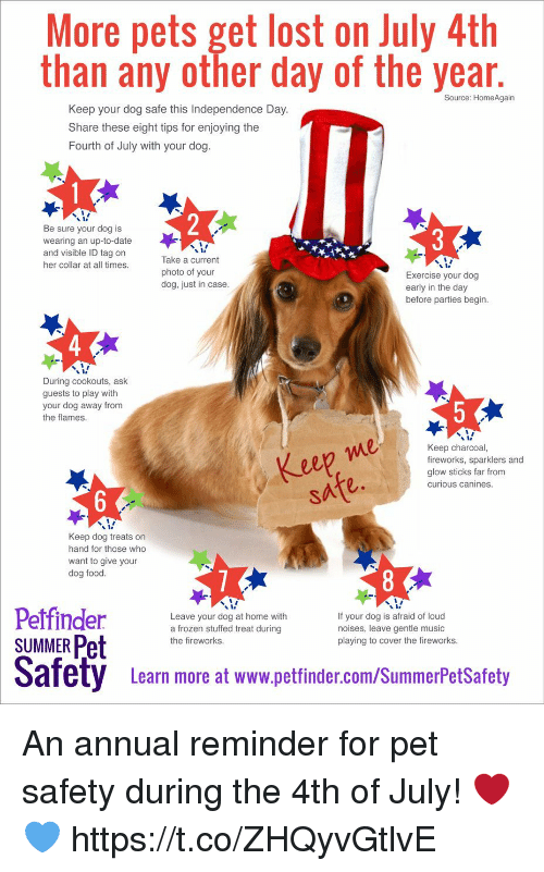 Food, Frozen, and Funny: More pets get lost on July 4th  than any other day of the year  Source: HomeAgain  Keep your dog safe this Independence Day  Share these eight tips for enjoying the  Fourth of July with your dog  Be sure your dog is  wearing an up-to-date  and visible ID tag on  her collar at all times  Take a current  photo of your  dog, just in case  Exercise your dog  early in the day  before parties begin  During cookouts, ask  guests to play with  your dog away from  the flames  eep me  safe.  Keep charcoal,  fireworks, sparklers and  glow sticks far from  curious canines  Keep dog treats on  hand for those who  want to give your  dog food  Leave your dog at home with  a frozen stuffed treat during  the fireworks  If your dog is afraid of loud  noises, leave gentle music  playing to cover the fireworks  SUMMER Pet  Safety Leam more at www.pettinder.com/SummerPetSatoty  Learn more at www.petfinder.com/SummerPetSafety An annual reminder for pet safety during the 4th of July! ❤️💙 https://t.co/ZHQyvGtlvE