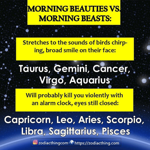 Clock, Alarm, and Alarm Clock: MORNING BEAUTIES VS  MORNING BEASTS:  Stretches to the sounds of birds chirp-  ing, broad smile on their face:  Taurus, Gemini, Cancer,  Virgo, Aquarius  Will probably kill you violently with  alarm clock, eyes still closed:  Capricorn, Leo, Aries, Scorpio,  Libra, Sagittarius, Pisces  zodiacthingcom https://zodiacthing.com