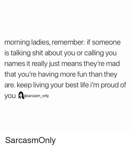 Funny, Life, and Memes: morning ladies, remember: if someone  is talking shit about you or calling you  names it really just means they're mad  that you're having more fun than they  are. keep living your best life i'm proud of  OU @sarcasm_only SarcasmOnly