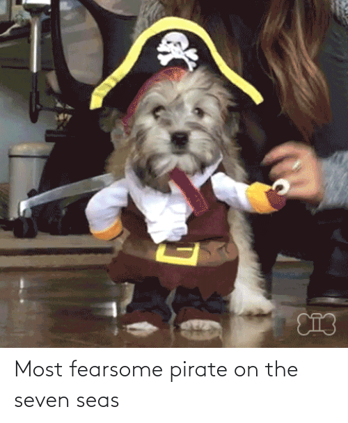 Pirate: Most fearsome pirate on the seven seas