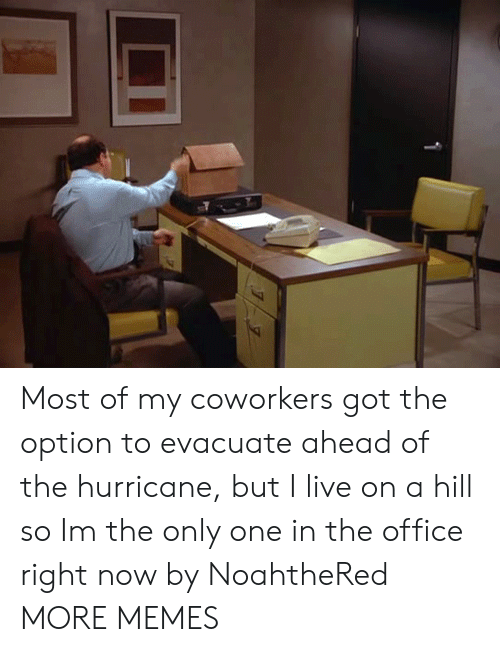 the hurricane: Most of my coworkers got the option to evacuate ahead of the hurricane, but I live on a hill so Im the only one in the office right now by NoahtheRed MORE MEMES