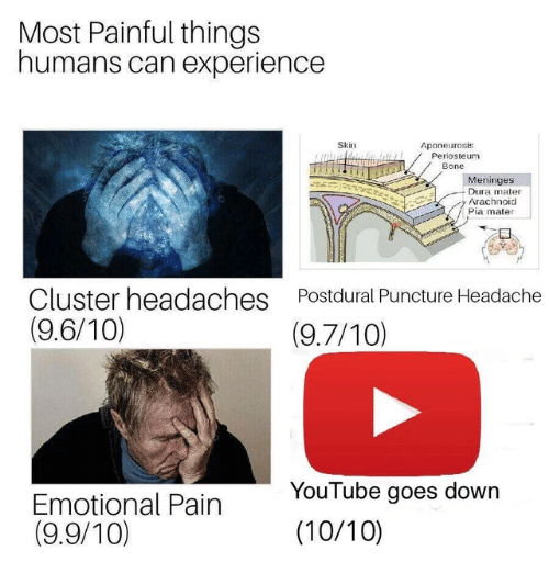 youtube.com, Experience, and Pain: Most Painful things  humans can experience  Skin  Aponeurosis  Periosteum  Bone  eninges  Dura mater  Arachnoid  Pia mater  Cluster headaches  (9.6/10)  Postdural Puncture Headache  (9.7/10)  Emotional Pain  (9.9/10)  YouTube goes dowrn  (10/10)
