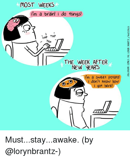 Stay Awake: MOST WEEKS  I'm a brain! do things!  TAP TAP  THE WEEK AFTER  NEW YEARS  I'm a sweet potato!  don't know how  I got here Must...stay...awake. (by @lorynbrantz-)