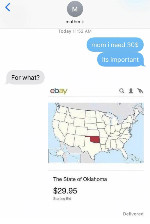Bid: mother>  Today 11:52 AM  mom i need 30$  its important  For what?  ebay  The State of Oklahoma  $29.95  Starting Bid  Delivered