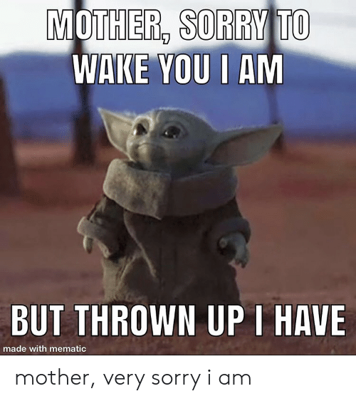 Sorry, Mother, and Wake: MOTHER, SORRY TO  WAKE YOU I AM  BUT THROWN UPI HAVE  made with mematic mother, very sorry i am