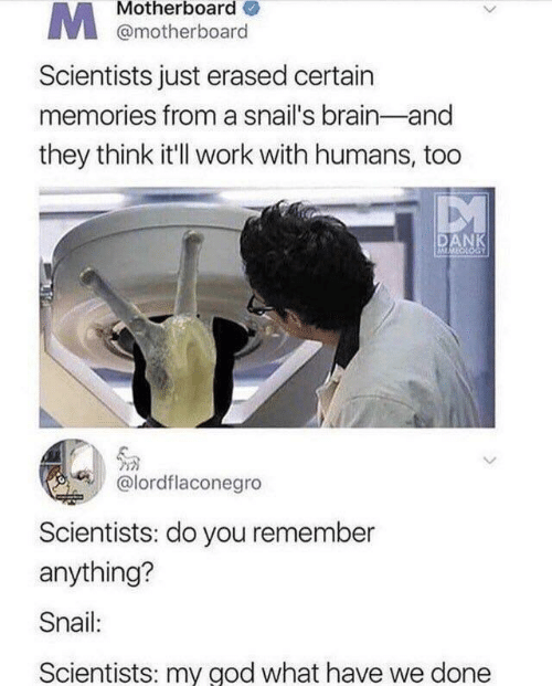 motherboard: Motherboard  @motherboard  Scientists just erased certain  memories from a snail's brain-and  they think it'll work with humans, too  DANK  MMECLOGY  @lordflaconegro  Scientists: do you remember  anything?  Snail:  Scientists: my god what have we done
