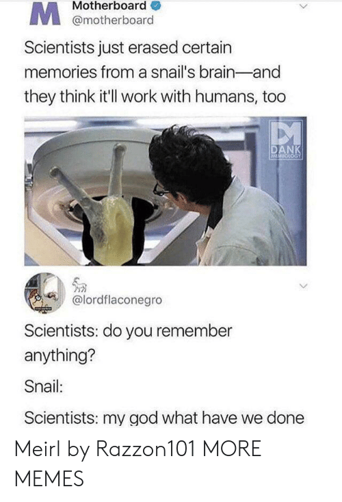 motherboard: Motherboard  @motherboard  Scientists just erased certain  memories from a snail's brain-and  they think it'l work with humans, too  DANK  MOOGY  @lordflaconegro  Scientists: do you remember  anything?  Snail:  Scientists: my god what have we done Meirl by Razzon101 MORE MEMES