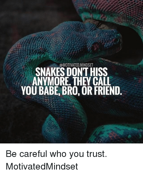 Memes, Snakes, and Be Careful: @MOTIVATED MINDSET  SNAKES DONT HISS  ANYMORE THEY CALL  YOU BABE, BRO, OR FRIEND Be careful who you trust. MotivatedMindset