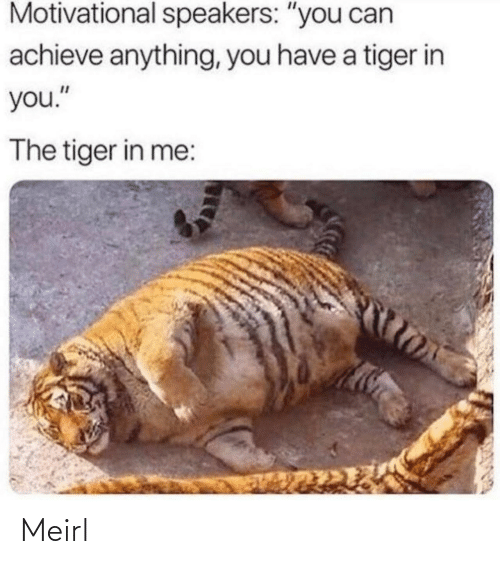 "Achieve: Motivational speakers: ""you can  achieve anything, you have a tiger in  you.""  The tiger in me: Meirl"