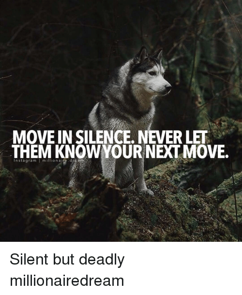 silencer: MOVE IN SILENCE. NEVER LET  THEM KNOWYOUR NEXT MOVE.  Instagram millionaire·d Silent but deadly millionairedream