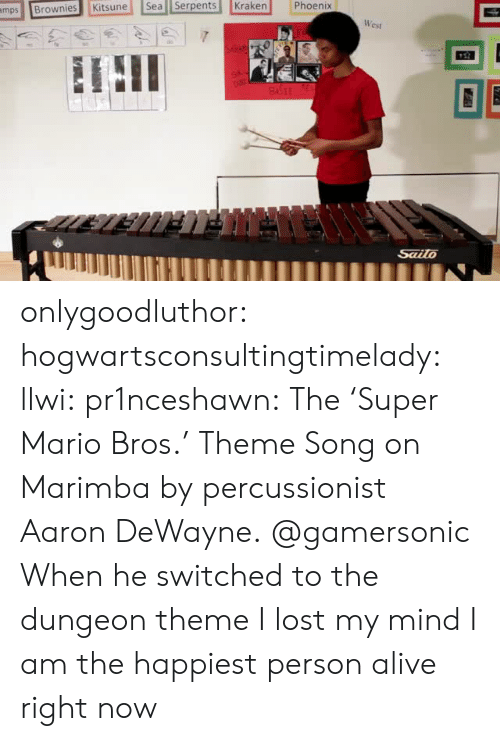 Super Mario Bros: mpsBrownies Kitsune Sea Serpents Kraken Phoenix  Cst  Sailo onlygoodluthor: hogwartsconsultingtimelady:  llwi:  pr1nceshawn:   The 'Super Mario Bros.' Theme Song on Marimbaby  percussionist Aaron DeWayne. @gamersonic    When he switched to the dungeon theme I lost my mind   I am the happiest person alive right now