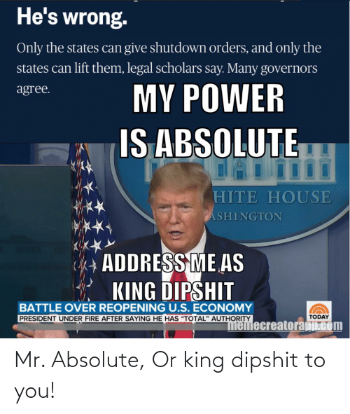 Donald Trump: Mr. Absolute, Or king dipshit to you!