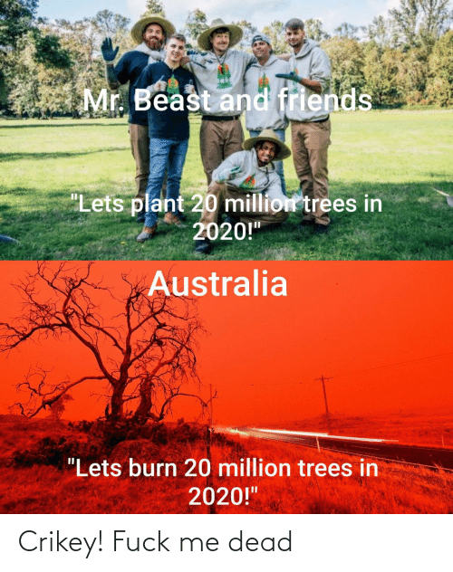 "let's: Mr. Beast and friends  ""Lets plant 20 million trees in  2020!""  Australia  ""Lets burn 20 million trees in  2020!"" Crikey! Fuck me dead"