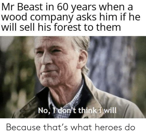 He Will: Mr Beast in 60 years when a  wood company asks him if he  will sell his forest to them  No, don't thinki will Because that's what heroes do