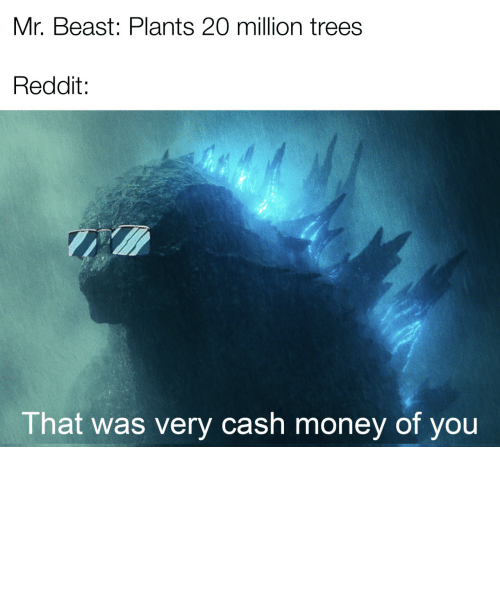 Cash Money: Mr. Beast: Plants 20 million trees  Reddit:  That was very cash money of you *happy Godzilla noises by AwkwardChaos7 MORE MEMES