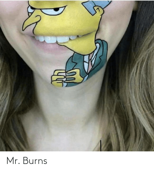Mr: Mr. Burns