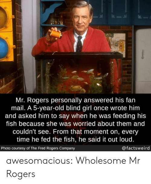 fed: Mr. Rogers personally answered his fan  mail. A 5-year-old blind girl once wrote him  and asked him to say when he was feeding his  fish because she was worried about them and  couldn't see. From that moment on, every  time he fed the fish, he said it out loud.  @factsweird  Photo courtesy of The Fred Rogers Company awesomacious:  Wholesome Mr Rogers