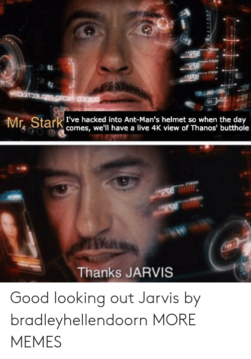 looking out: Mr Stark te hacke to Ant-Man's helmet so when tueday  comes, we'll have a live 4K view of Thanos' butthole  Thanks JARVIS Good looking out Jarvis by bradleyhellendoorn MORE MEMES