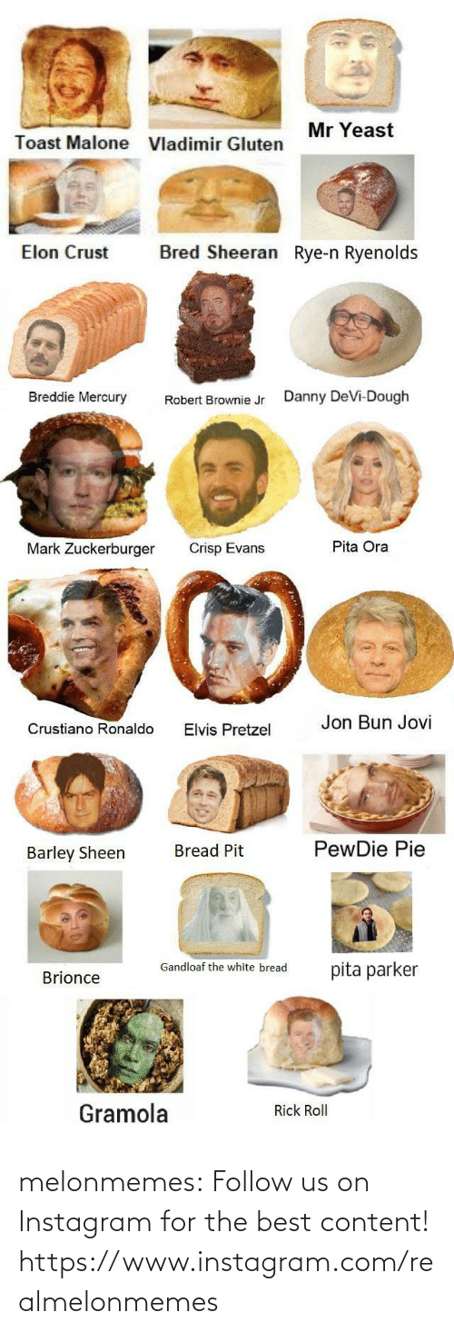 Toast: Mr Yeast  Toast Malone  Vladimir Gluten  Bred Sheeran Rye-n Ryenolds  Elon Crust  Breddie Mercury  Danny DeVi-Dough  Robert Brownie Jr  Pita Ora  Mark Zuckerburger  Crisp Evans  Jon Bun Jovi  Crustiano Ronaldo  Elvis Pretzel  PewDie Pie  Bread Pit  Barley Sheen  Gandloaf the white bread  pita parker  Brionce  Gramola  Rick Roll melonmemes:  Follow us on Instagram for the best content! https://www.instagram.com/realmelonmemes