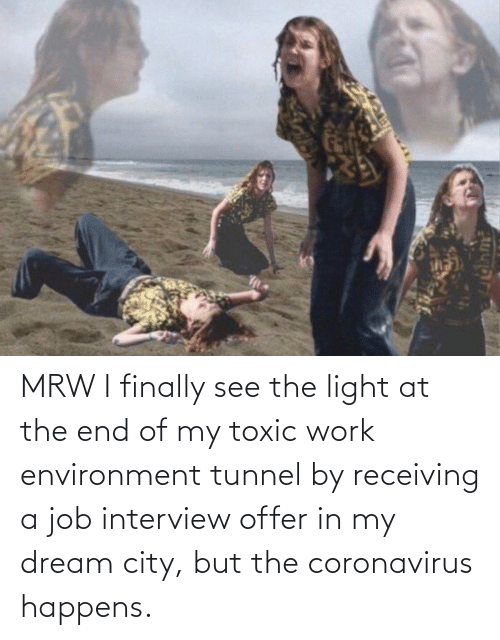 Job interview: MRW I finally see the light at the end of my toxic work environment tunnel by receiving a job interview offer in my dream city, but the coronavirus happens.