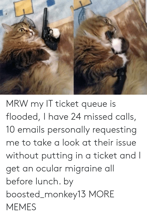 Ocular: MRW my IT ticket queue is flooded, I have 24 missed calls, 10 emails personally requesting me to take a look at their issue without putting in a ticket and I get an ocular migraine all before lunch. by boosted_monkey13 MORE MEMES
