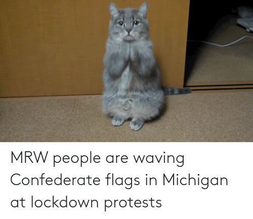 Michigan: MRW people are waving Confederate flags in Michigan at lockdown protests