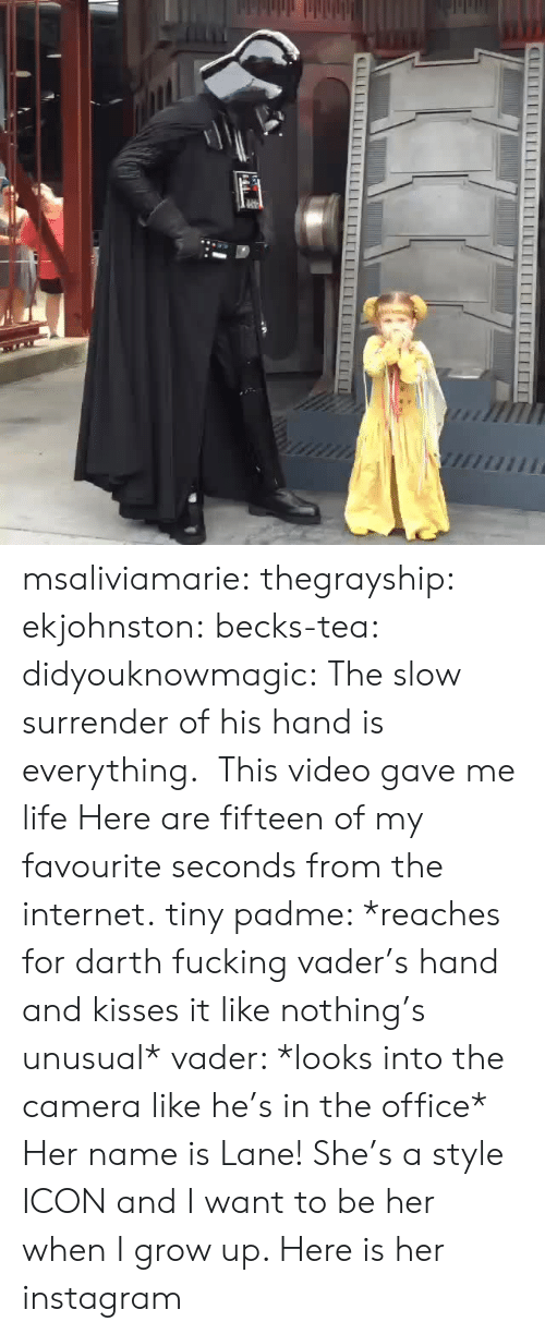 darth: msaliviamarie: thegrayship:  ekjohnston:  becks-tea:  didyouknowmagic:  The slow surrender of his hand is everything.   This video gave me life  Here are fifteen of my favourite seconds from the internet.  tiny padme: *reaches for darth fucking vader's hand and kisses it like nothing's unusual* vader: *looks into the camera like he's in the office*  Her name is Lane! She's a style ICON and I want to be her when I grow up. Here is her instagram