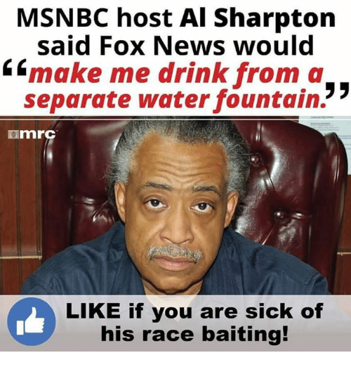 Al Sharpton: MSNBC host Al Sharpton  said Fox News would  6 make me drink from a  35  separate water fountain.  ImrC  LIKE if you are sick of  his race baiting!