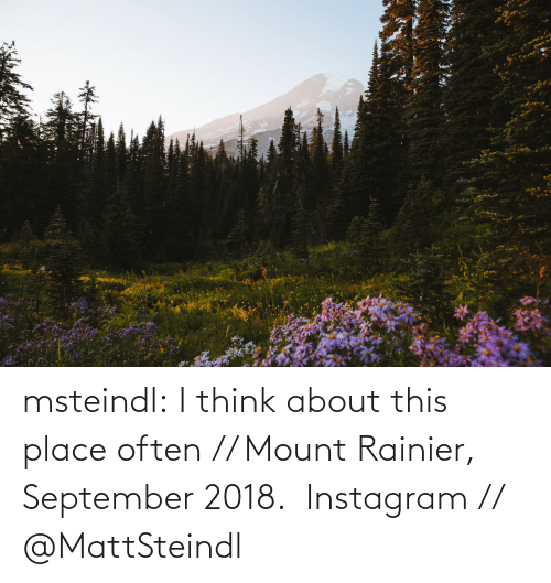 amp: msteindl: I think about this place often // Mount Rainier, September 2018.    Instagram // @MattSteindl