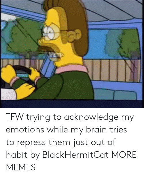 Dank, Memes, and Target: mu TFW trying to acknowledge my emotions while my brain tries to repress them just out of habit by BlackHermitCat MORE MEMES