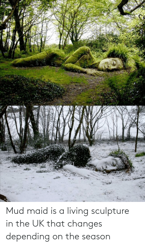 Sculpture: Mud maid is a living sculpture in the UK that changes depending on the season
